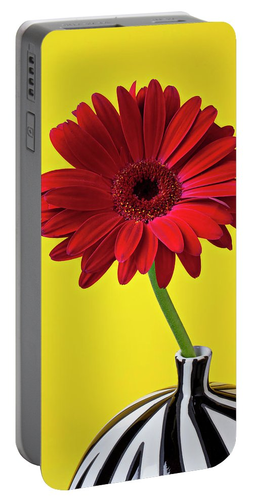 Red Mum Mums Portable Battery Charger featuring the photograph Red Mum Against Yellow Background by Garry Gay