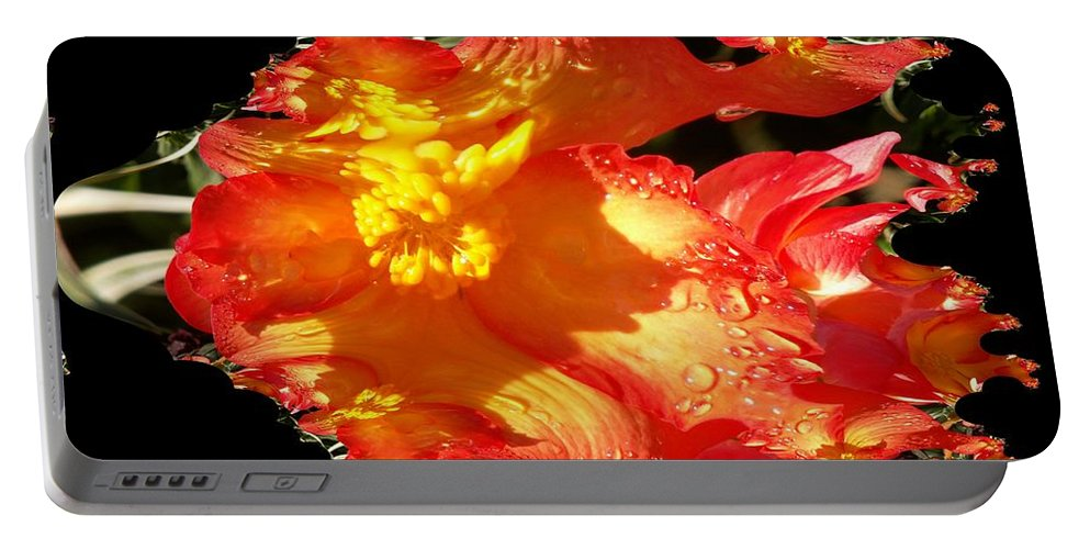 Flowers Portable Battery Charger featuring the digital art Red N Yellow Flowers by Tim Allen