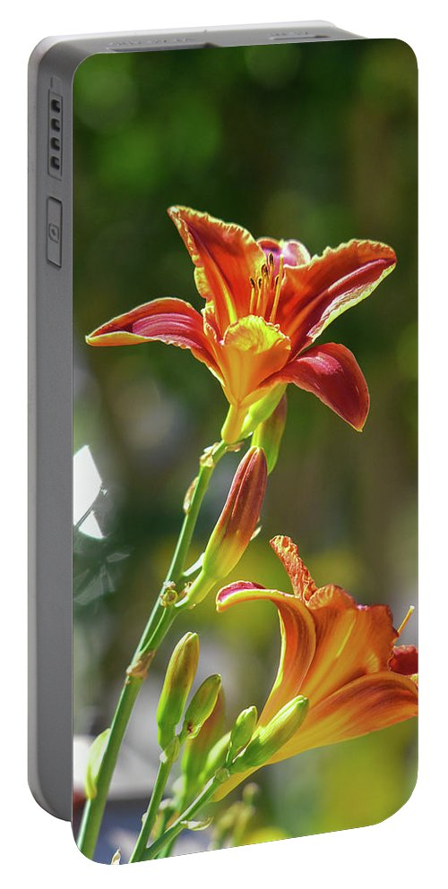 Linda Brody Portable Battery Charger featuring the photograph Red Orange Day Lilies I by Linda Brody