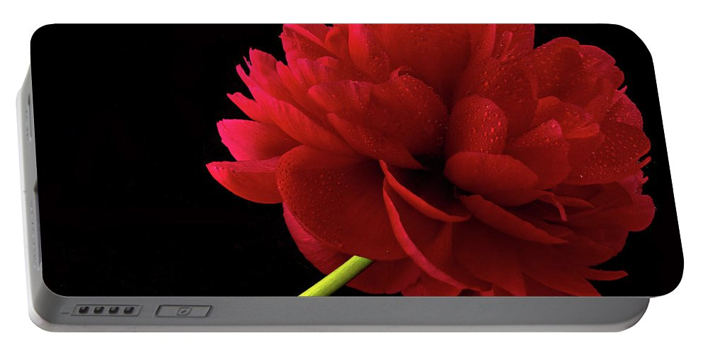 Close Up Portable Battery Charger featuring the photograph Red Peony by Jean Noren