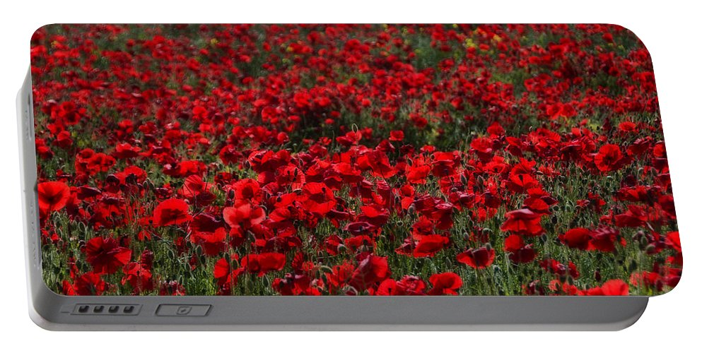 Bloom Portable Battery Charger featuring the photograph Red Poppies by Svetlana Sewell