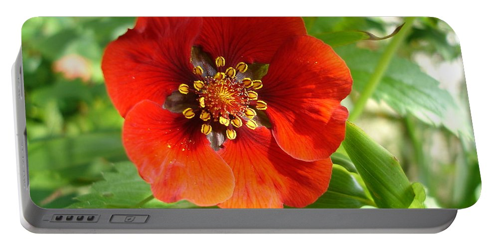 Flora Portable Battery Charger featuring the photograph Red Red Bloom by Susan Baker