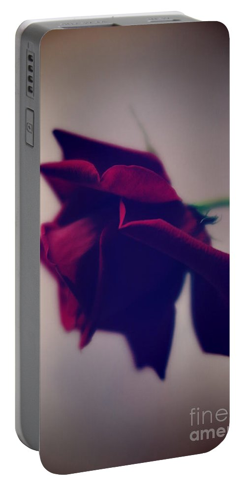 Floral Portable Battery Charger featuring the photograph Red Rose Abstract 1 by Tara Shalton