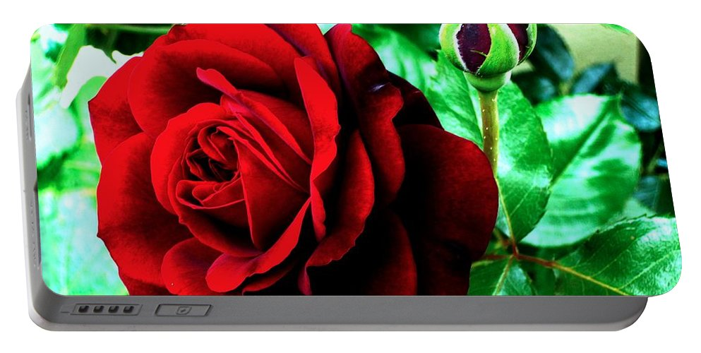 Portable Battery Charger featuring the photograph red Rose by Helmut Rottler