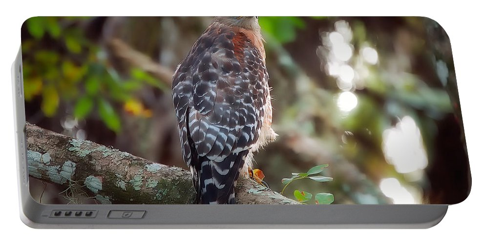 Bird Portable Battery Charger featuring the greeting card Red-shouldered Hawk by Rich Leighton