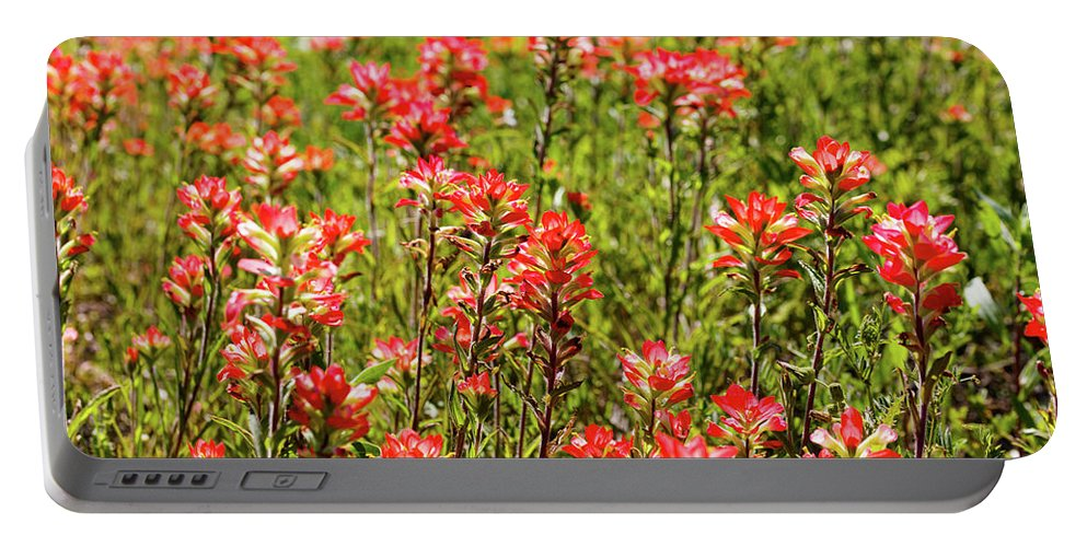 Austin Portable Battery Charger featuring the photograph Red Texas Wildflowers by Raul Rodriguez