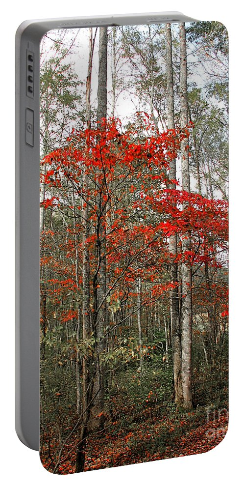 Landscape Portable Battery Charger featuring the photograph Red Tree by Todd Blanchard