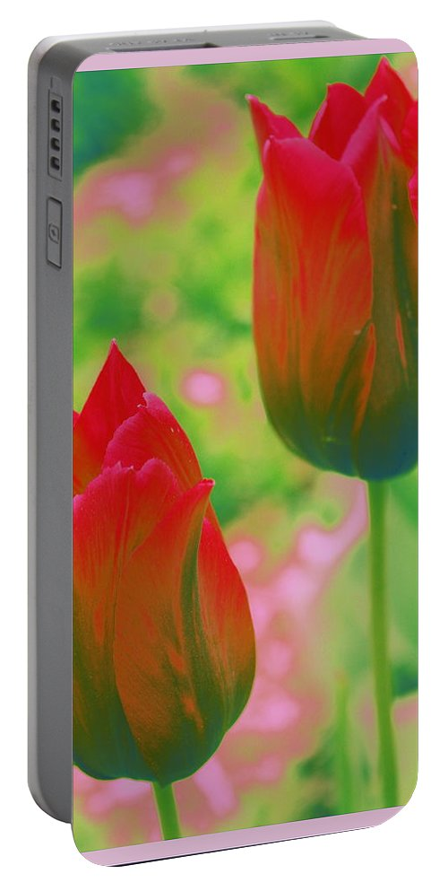 Tulip Portable Battery Charger featuring the photograph Red Tulips Pop Art by Dora Sofia Caputo Photographic Design and Fine Art
