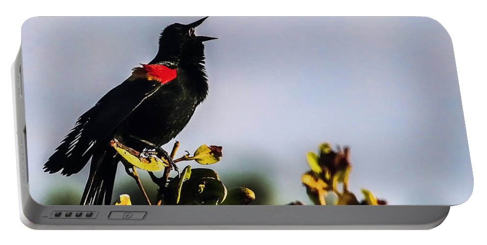 Florida Portable Battery Charger featuring the photograph Red Wing Black Bird by Mark Fuge