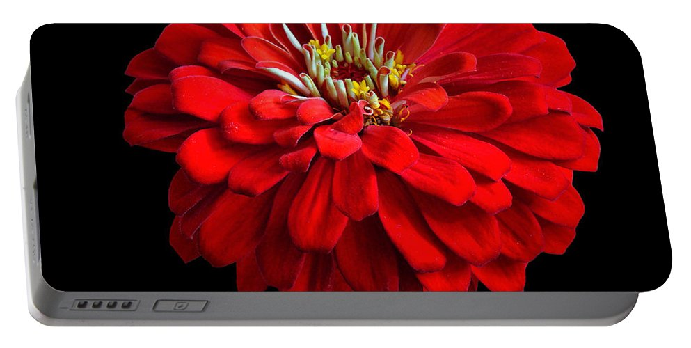 Flower Portable Battery Charger featuring the photograph Red Zinnia by Sandy Keeton