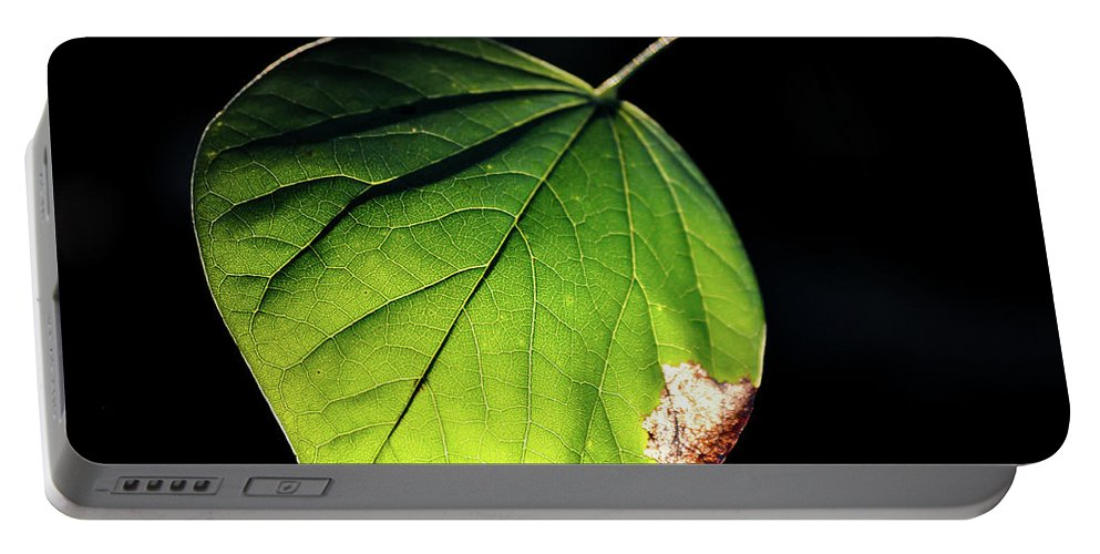 Redbud Portable Battery Charger featuring the photograph Redbud Leaf by Michelle Rollins