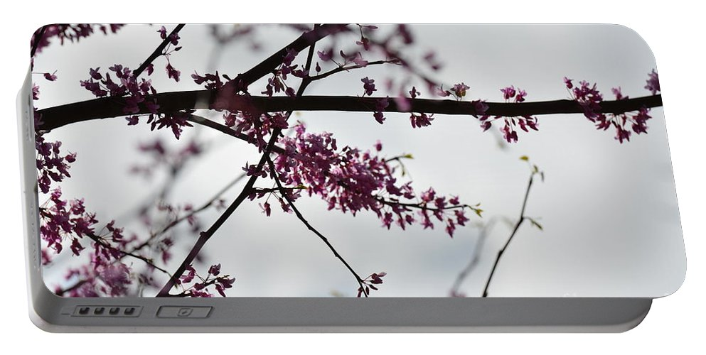 Redbuds In The Mist Portable Battery Charger featuring the photograph Redbuds In The Mist by Maria Urso