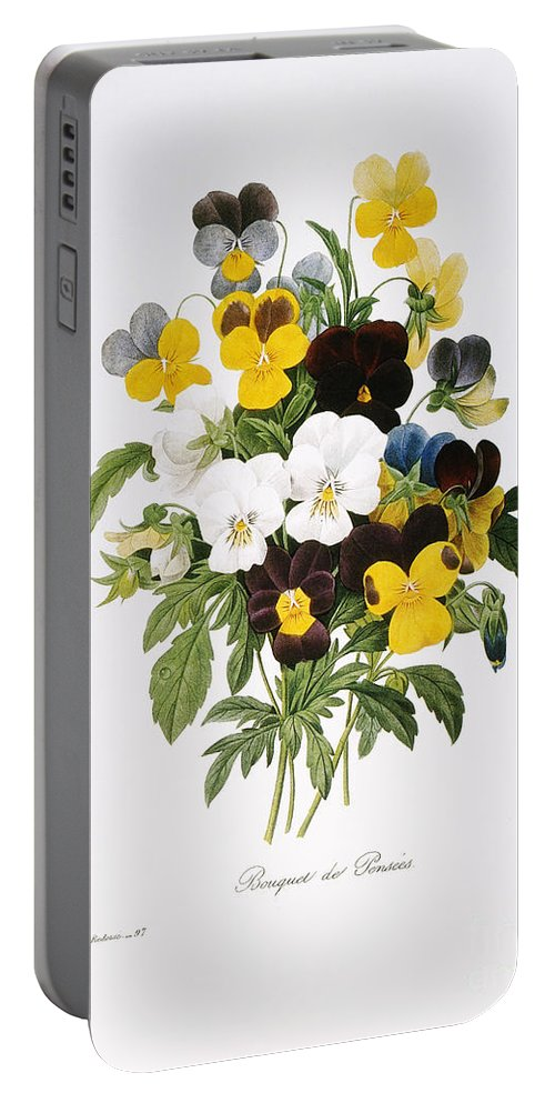1833 Portable Battery Charger featuring the photograph Redoute: Pansy, 1833 by Granger