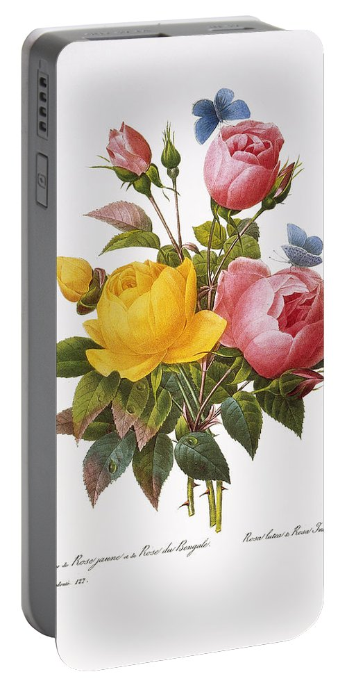1833 Portable Battery Charger featuring the photograph Redoute: Roses, 1833 by Granger
