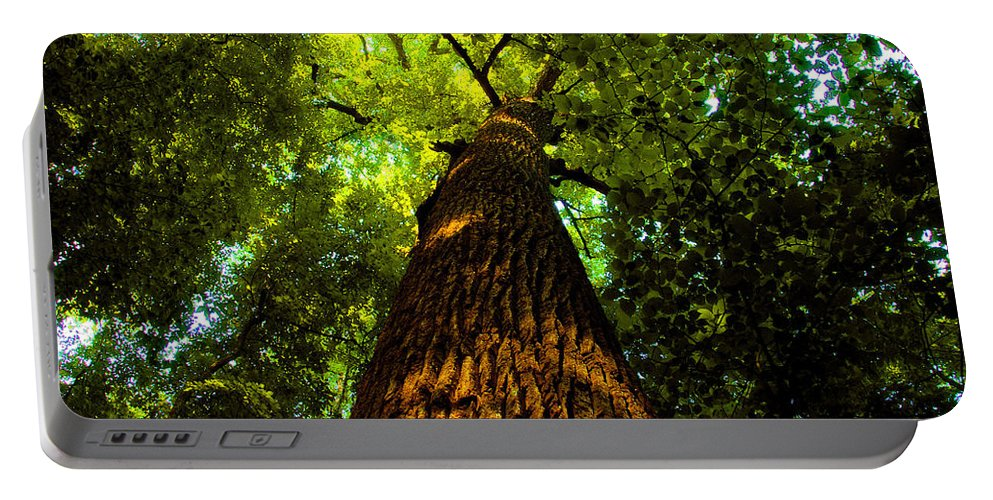 Redwood Forest Portable Battery Charger featuring the painting Redwoods by David Lee Thompson