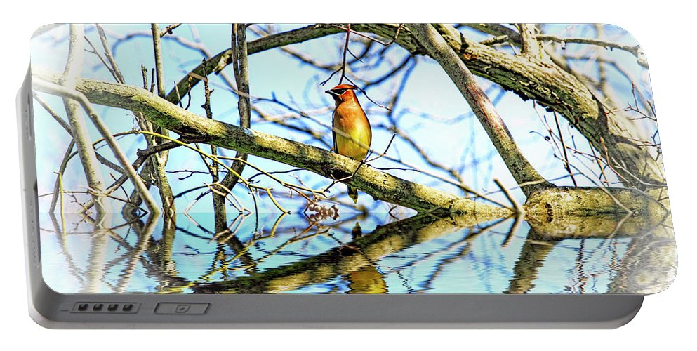 Current Portable Battery Charger featuring the photograph Refection Of Cedar Waxwing by Geraldine Scull