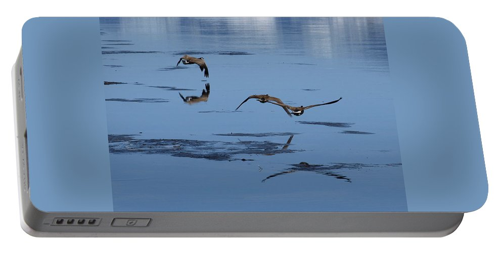 Birds Portable Battery Charger featuring the photograph Reflecting Geese by DeeLon Merritt