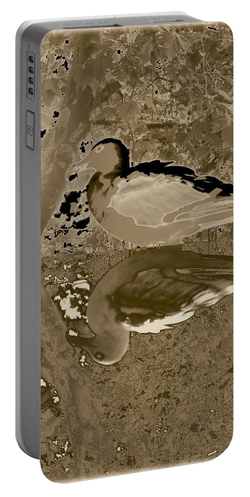 Sea Gull Portable Battery Charger featuring the photograph Reflecting by Tim Allen