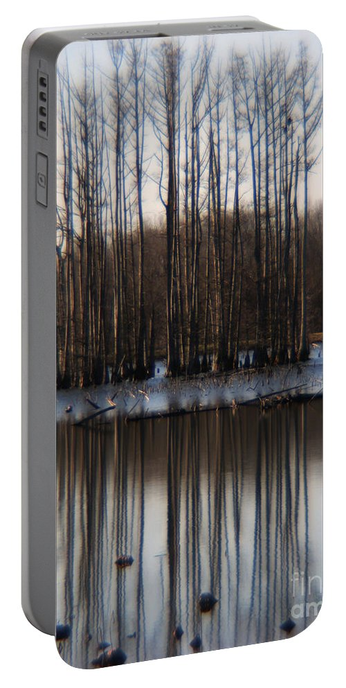 Nature Portable Battery Charger featuring the photograph Reflection by Amanda Barcon