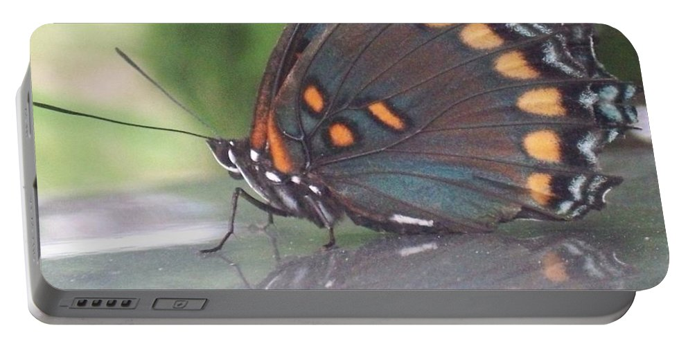 Reflection Portable Battery Charger featuring the photograph Reflection Of Beauty by Sandra McClure