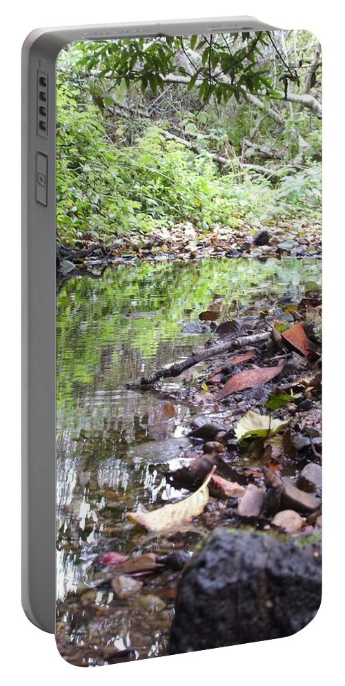 Woods Portable Battery Charger featuring the photograph Reflection by Shari Chavira