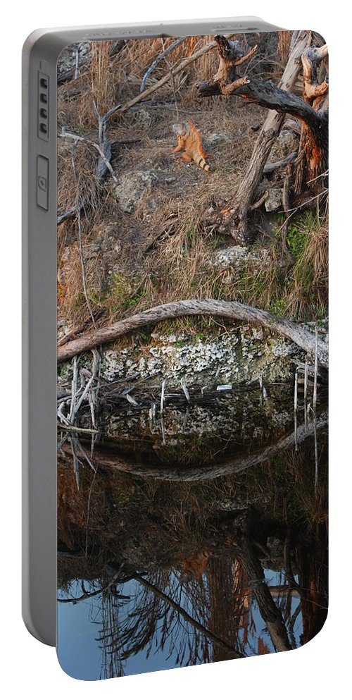 Iguana Portable Battery Charger featuring the photograph Reflections Iguana by Rob Hans