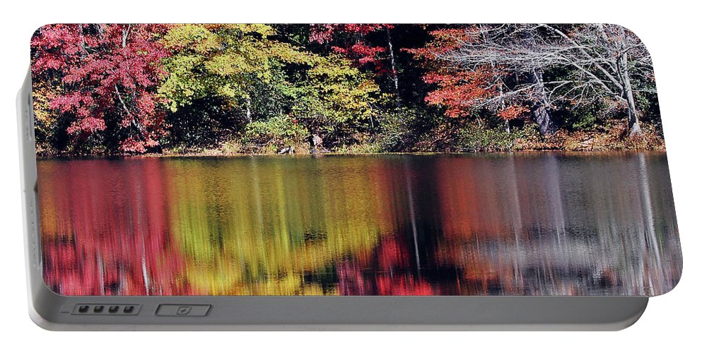 Water Portable Battery Charger featuring the photograph Reflections Of A Bare Grey Tree by Jennifer Robin