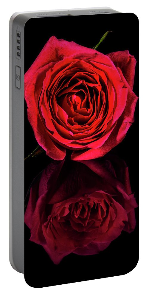 Rose Portable Battery Charger featuring the photograph Reflections Of A Red Rose by David Saunders