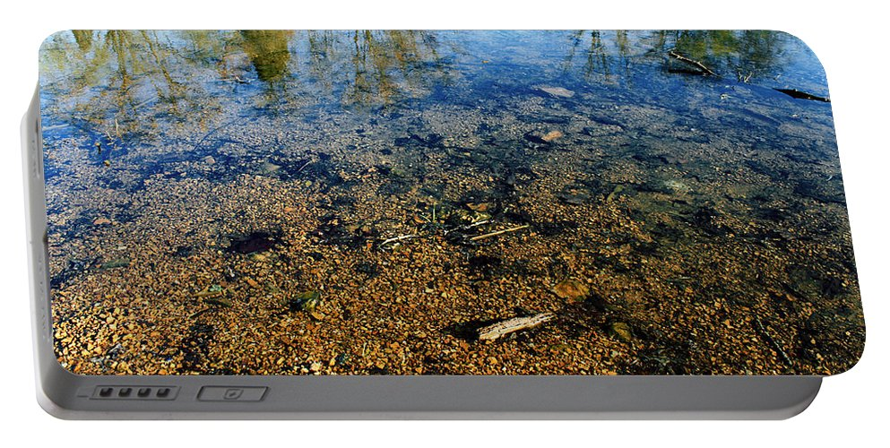 Landscape Portable Battery Charger featuring the photograph Reflections Of Nature by Todd Blanchard