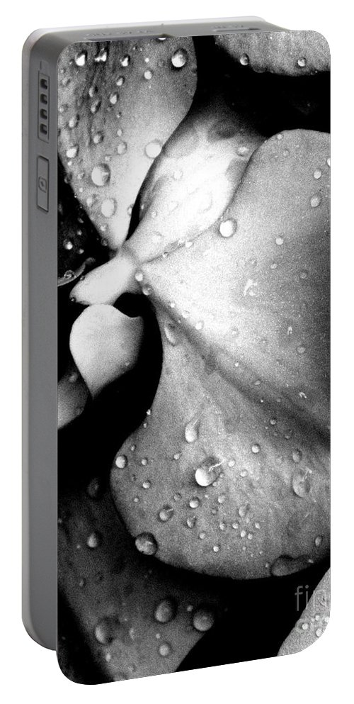 Orchid Portable Battery Charger featuring the photograph Refreshed by Anne McDonald