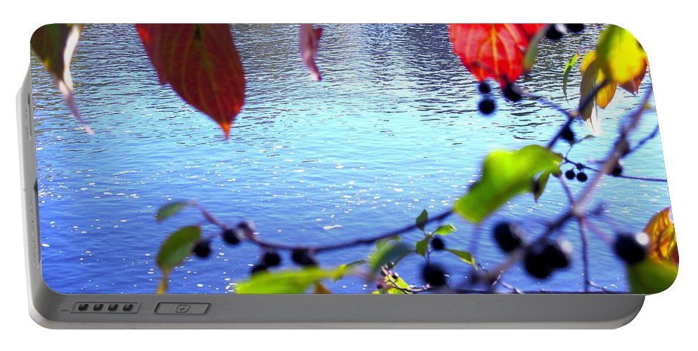 Water Portable Battery Charger featuring the photograph Refreshing View by Sybil Staples