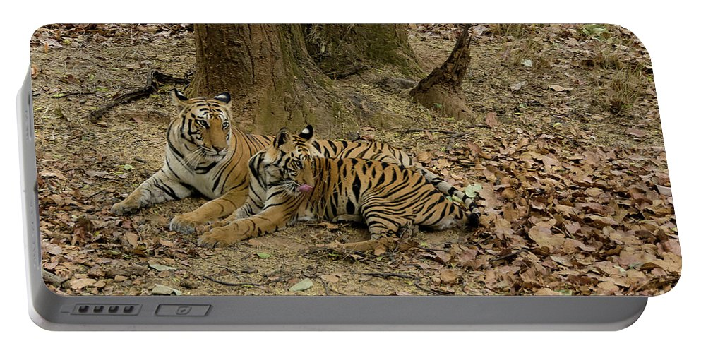 Tiger Portable Battery Charger featuring the photograph Relaxing by Pravine Chester