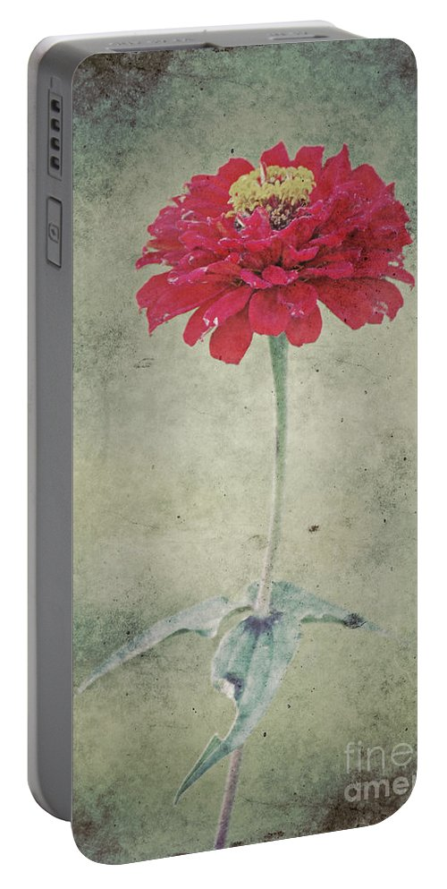 Autumn Portable Battery Charger featuring the photograph Remeber Me by Angela Doelling AD DESIGN Photo and PhotoArt