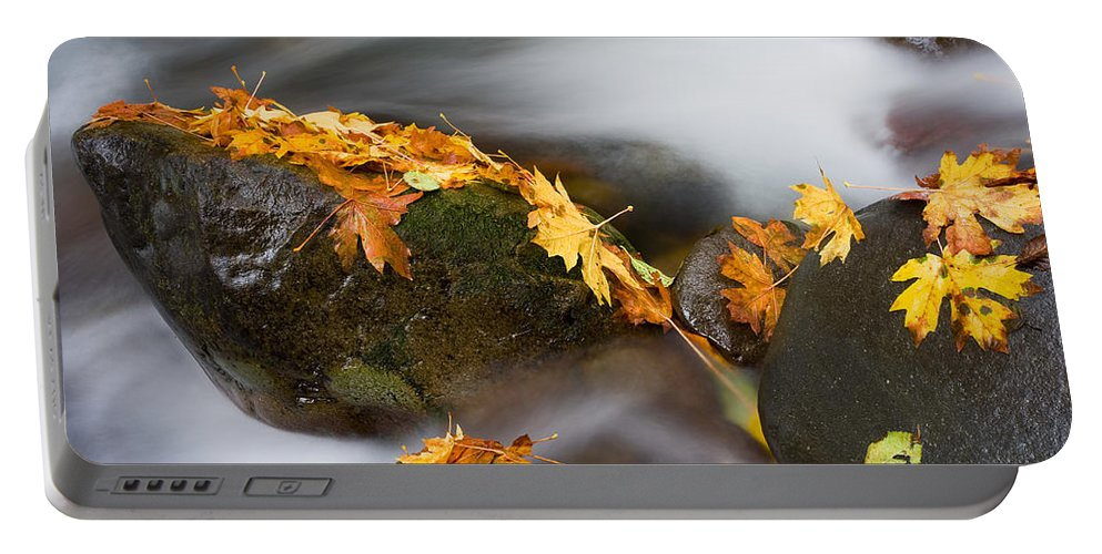 Autumn Portable Battery Charger featuring the photograph Respite by Mike Dawson