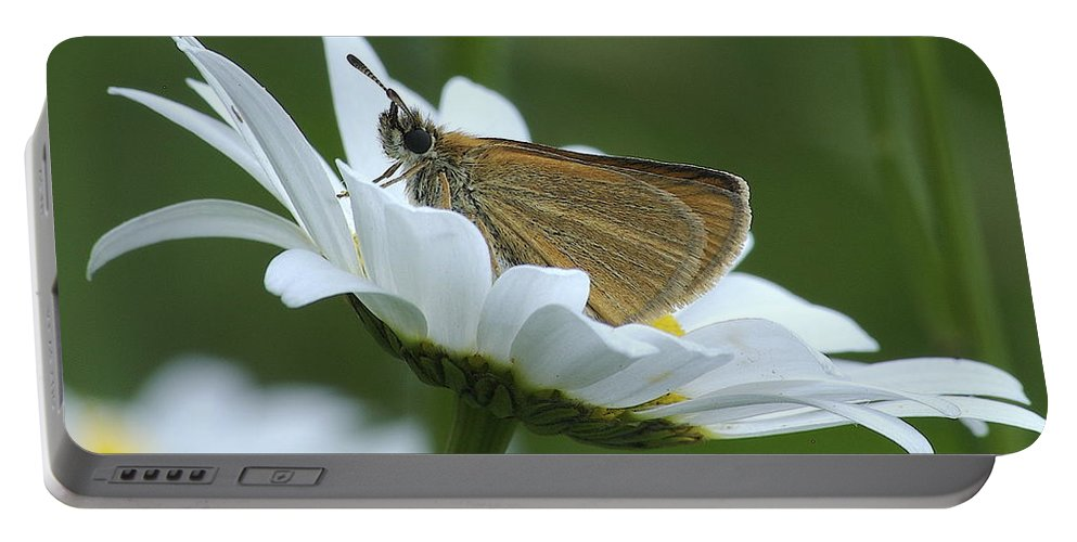 Daisy Portable Battery Charger featuring the photograph Resting Place by Michael Peychich