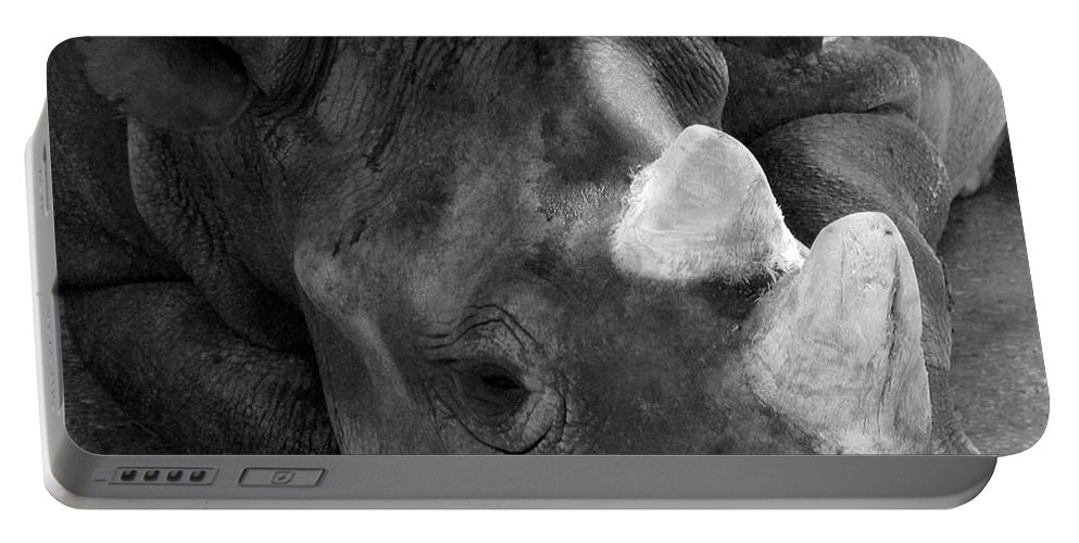 Rhinoceros Portable Battery Charger featuring the photograph Rhino Nap by Alycia Christine