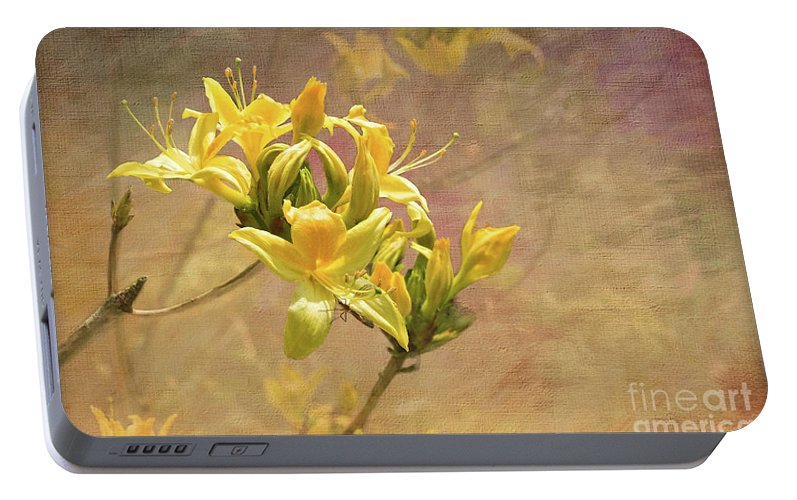 Rhododendron Luteum Portable Battery Charger featuring the digital art Rhododendron Luteum by Liz Alderdice