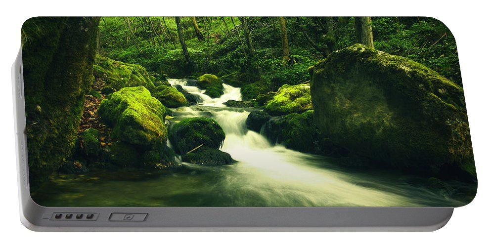 Amazing Portable Battery Charger featuring the photograph River In A Green Forest by Sandra Rugina