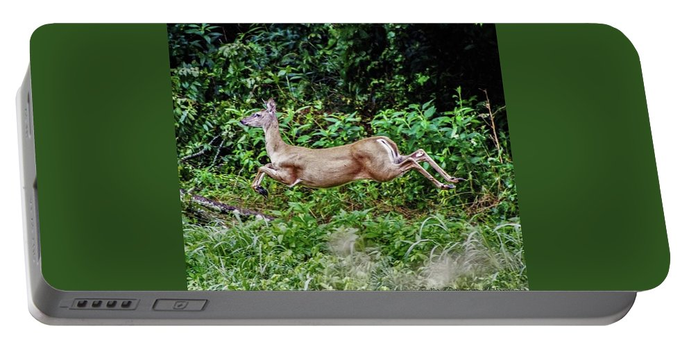 Deer Portable Battery Charger featuring the photograph Rocking Deer by Chad Fuller