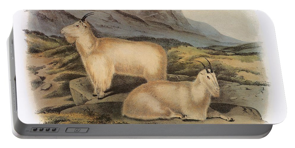 Aod Portable Battery Charger featuring the photograph Rocky Mountain Goats by Granger