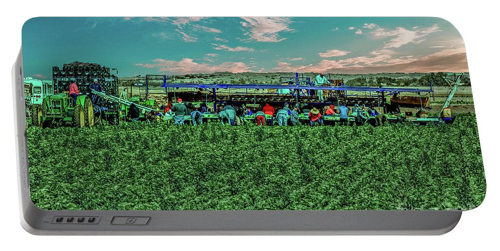 Arizona Portable Battery Charger featuring the photograph Romaine Lettuce Harvest by Robert Bales