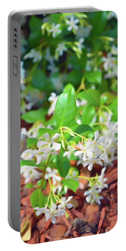 Jasmine Portable Battery Charger featuring the photograph Romantic Skies Jasmine In Bloom by Aimee L Maher ALM GALLERY
