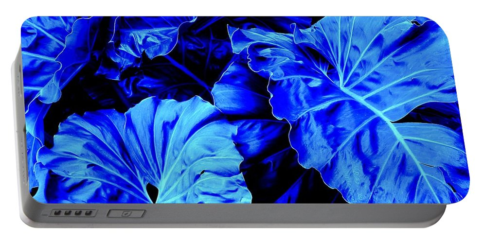 Blue Portable Battery Charger featuring the photograph Romney Blue by Ian MacDonald