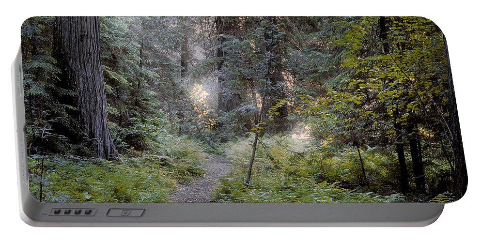 Roosevelt Grove Portable Battery Charger featuring the photograph Roosevelt Grove by Leland D Howard