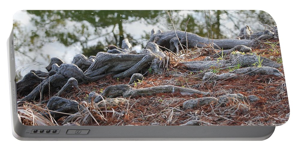 Roots Portable Battery Charger featuring the photograph Rooted Lake Edge by Rob Hans
