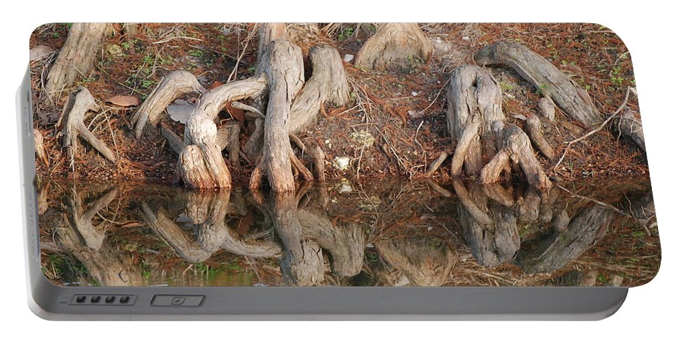 Roots Portable Battery Charger featuring the photograph Rooted Reflections by Rob Hans