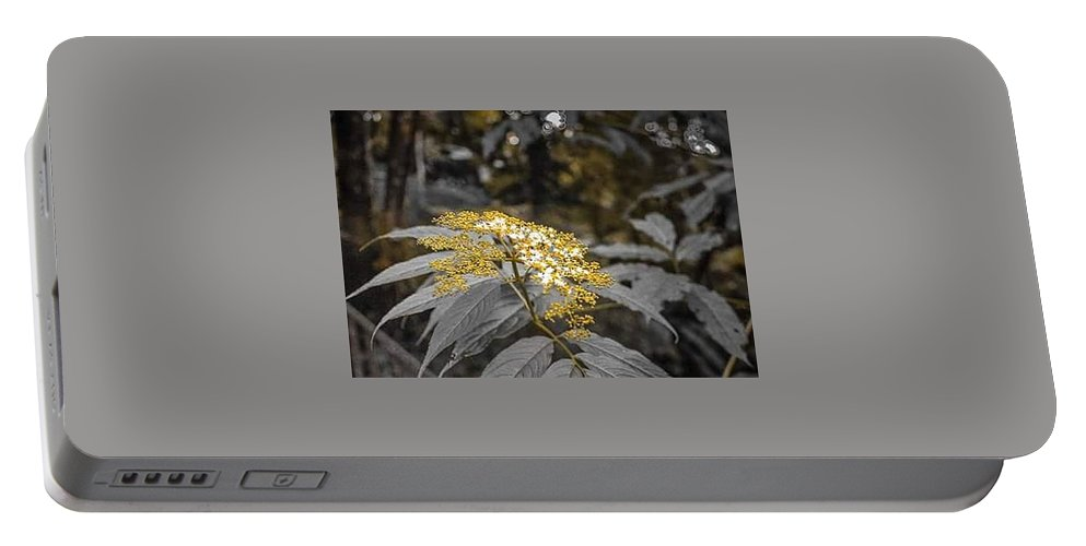Flowers Portable Battery Charger featuring the digital art Rose Gold by Derrick Palmer