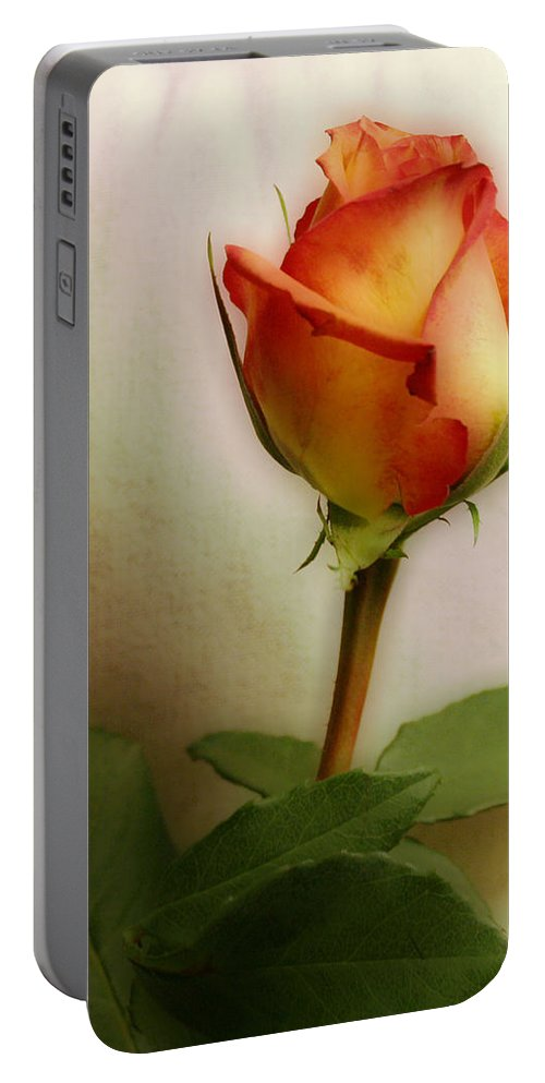 Rose Portable Battery Charger featuring the photograph Rose by Linda Sannuti