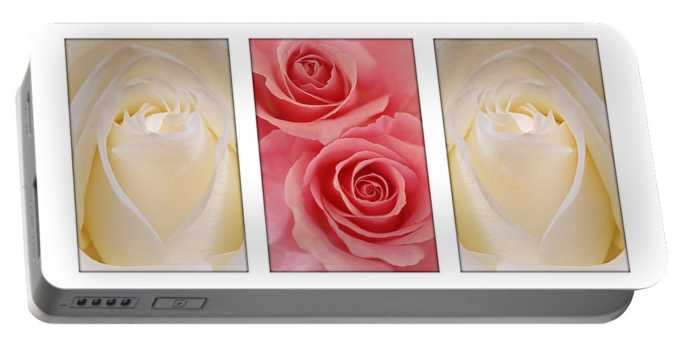 Rose Portable Battery Charger featuring the photograph Rose Series by Jill Reger
