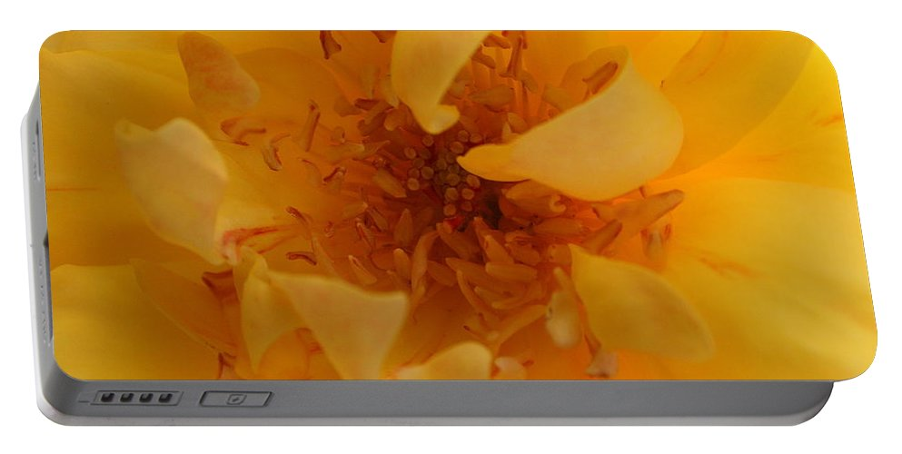 Rose Portable Battery Charger featuring the photograph Rose Yellow by Marna Edwards Flavell